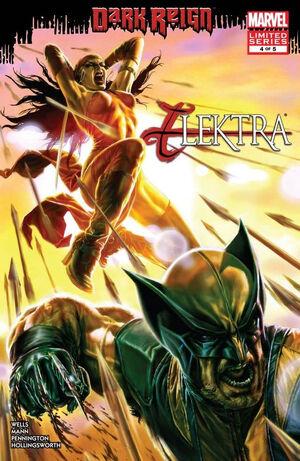 Dark Reign Elektra Vol 1 4.jpg