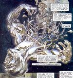 Norrin Radd (Earth-9591)