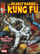 Deadly Hands of Kung Fu Vol 1 27