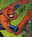 Peter Parker (Earth-9411)