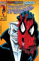 Spectacular Spider-Man Vol 1 206