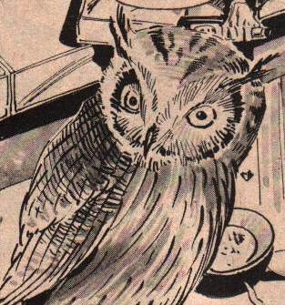 Al (Owl) (Earth-791)