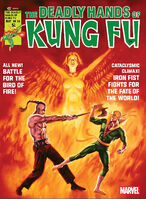 Deadly Hands of Kung Fu Vol 1 24
