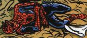 Peter Parker (Earth-Unknown) from Infinity Countdown Adam Warlock Vol 1 1 0001.jpg
