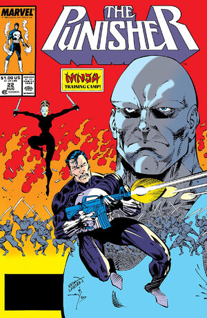Punisher Vol 2 22.jpg