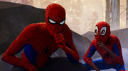 Peter Parker (Earth-TRN701) and Miles Morales (Earth-TRN700) from Spider-Man Into the Spider-Verse 001.png
