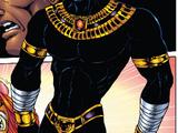 T'Challa (Earth-2301)
