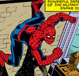 Peter Parker (Earth-804)