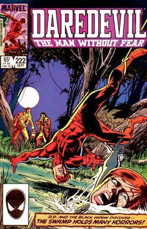 Daredevil Vol 1 222.jpg