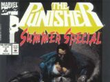 Punisher Summer Special Vol 1 2