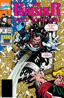 Punisher War Journal Vol 1 16