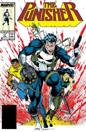 Punisher vol2 017.jpg
