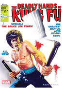 Deadly Hands of Kung Fu Vol 1 28