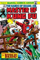 Master of Kung Fu 23