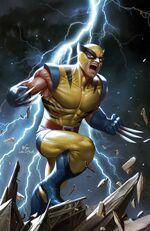 Marvel Tales Wolverine Vol 1 1 Virgin Variant.jpg