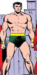 Namor McKenzie (Earth-8206)