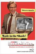 WandaVision poster 018