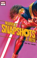 X-Men Marvels Snapshots Vol 1 1