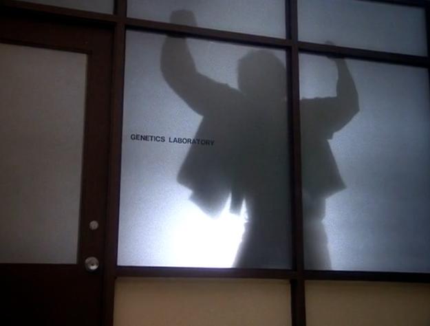 The Incredible Hulk (TV series) Season 1 10