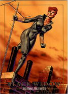Natalia Romanoff (Earth-616) from Marvel Masterpieces Trading Cards 1992 0001