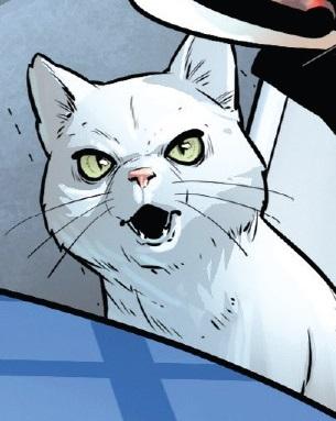 Rocky (Cat) (Earth-616)