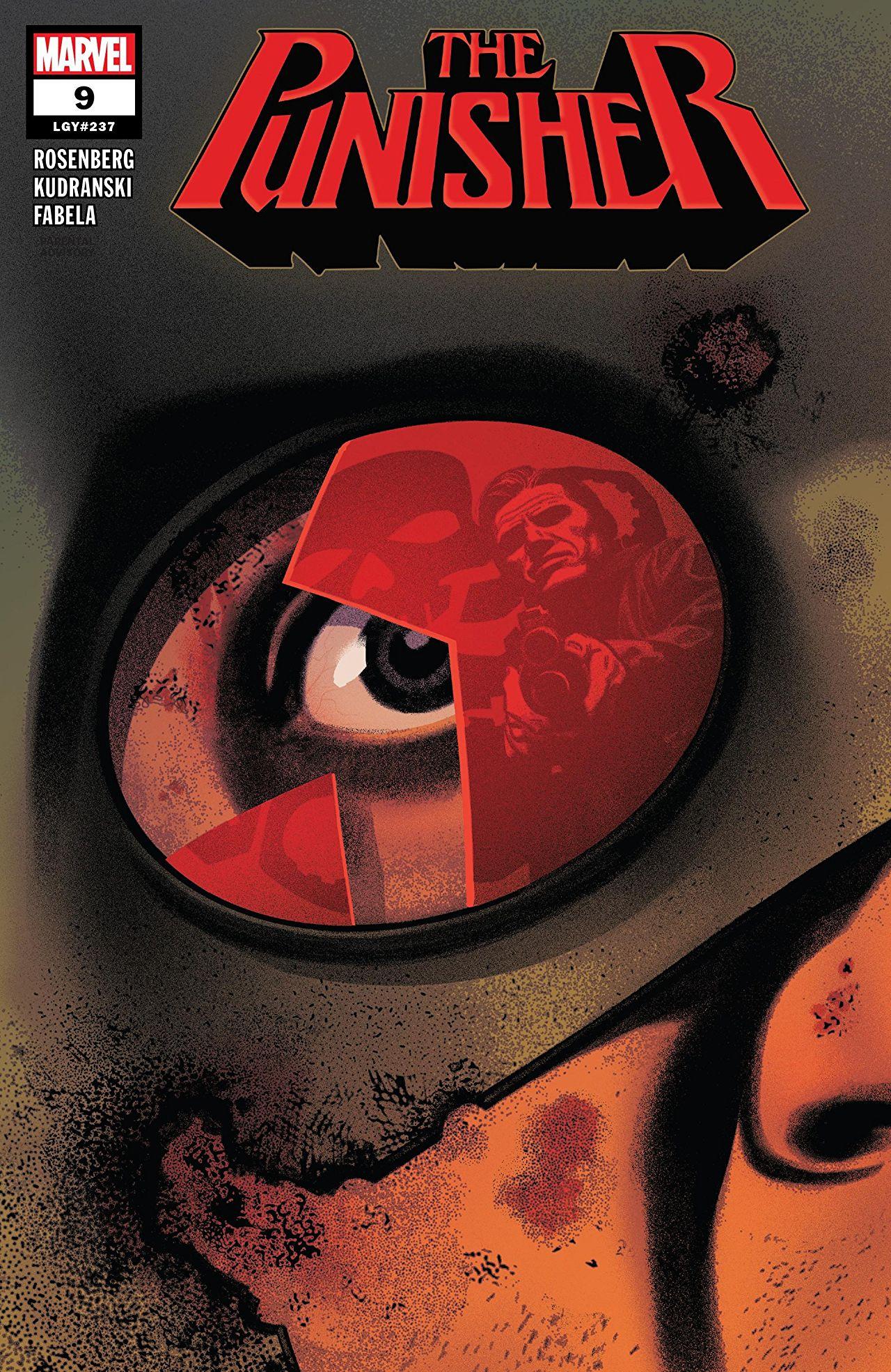 Punisher Vol 12 9