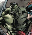 Bruce Banner (Earth-6195)