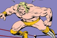Terry Bollea (Earth-616)