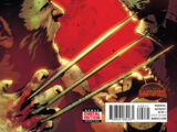 Old Man Logan Vol 1 2
