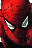 Amazing Spider-Man Vol 1 623 Textless