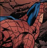 Peter Parker (Earth-10363)
