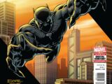 Black Panther: The Sound and the Fury Vol 1 1