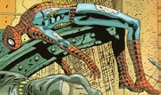 Peter Parker (Earth-Unknown) from Marvel Knights Hulk Vol 1 4 001.jpg