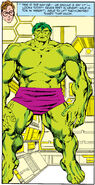 Bruce Banner (Earth-616) from Incredible Hulk Vol 1 318 001