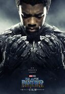 Black Panther (film) poster 004