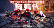 Spider-Man Into the Spider-Verse poster 020