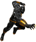 T'Challa (Earth-30847)