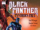Black Panther: Panther's Prey Vol 1 1