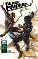 Black Panther The Man Without Fear Vol 1 516