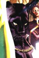 T'Challa (Earth-9997)