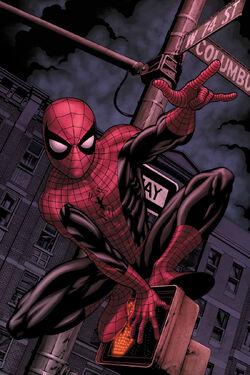 Web of Spider-Man Vol 1 129.1 Textless.jpg