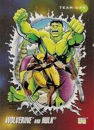 James Howlett and Bruce Banner (Earth-616) from Marvel Universe Cards Series III 001