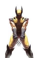 Wolverine Vol 3 73 70th Anniversary Variant Textless.jpg