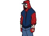 Spider-Bandits (Earth-616)