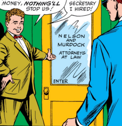 Nelson and Murdock Law Office