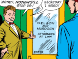 Nelson and Murdock (Earth-616)/Gallery