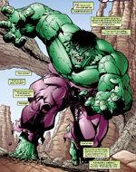 Bruce Banner (Earth-901237)