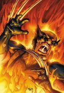 Wolverine Firebreak Vol 1 1 Textless