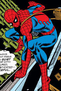 Peter Parker (Earth-616) from Amazing Spider-Man Vol 1 144 001