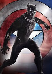 T'Challa (Earth-199999) from Captain America Civil War 002.jpg